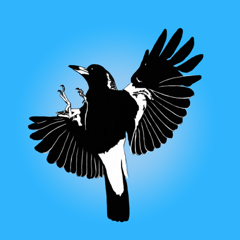 Magpies: learn to fly by Su_G fabric by su_g on Spoonflower - custom fabric