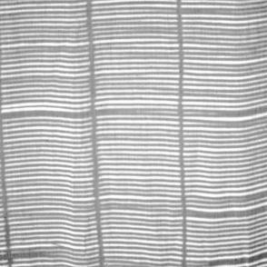 Grey Bamboo Shadow