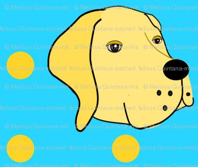 Sarah the Yellow Lab