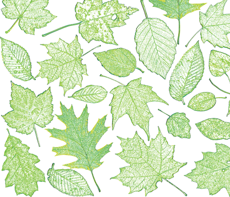 leaf etchings in green fabric by weavingmajor on Spoonflower - custom fabric