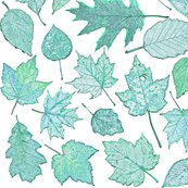 Rr0_leaf_etchings_teal_shop_thumb