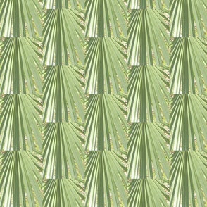 Cubist palm leaves