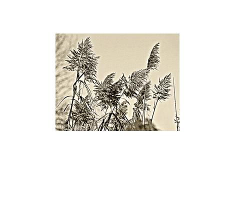 Dead Horse Bay/Phragmites fabric by relative_of_otis on Spoonflower - custom fabric