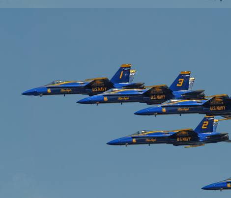 Navy's Blue Angels — Annapolis, MD fabric by pigsdofly on Spoonflower - custom fabric