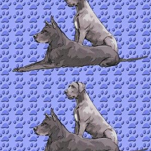 Blue Danes and Paw Prints
