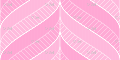 tickled pink - feather border