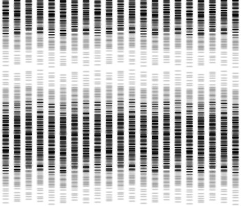 DNA_Blueprint_Rockstar fabric by tina_fab on Spoonflower - custom fabric