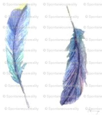 Cosmic Feathers