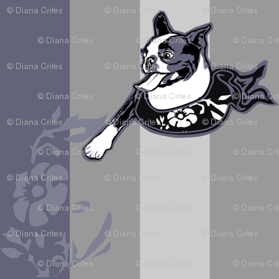 Excited Boston Terrier bust against tonal stripes