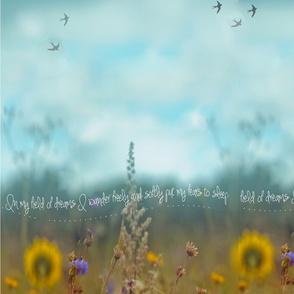dream_field