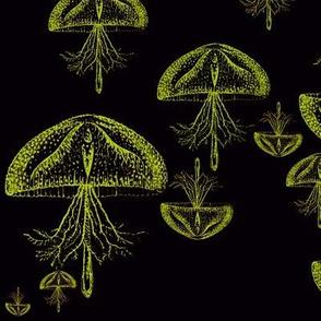 Jellyfish Danger (Nuclear)
