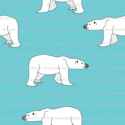 Polar Bears on Teal