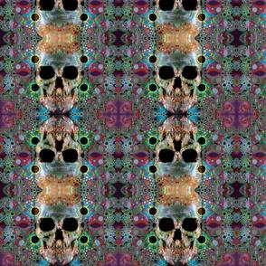 neanderskull_sf2
