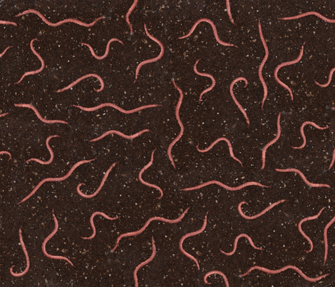 Worms in dirt fabric by sufficiency on Spoonflower - custom fabric