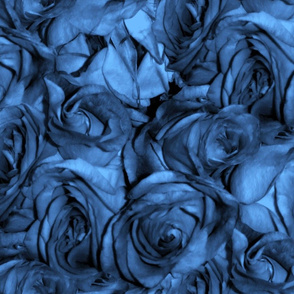 Blue Roses For a Red Lady