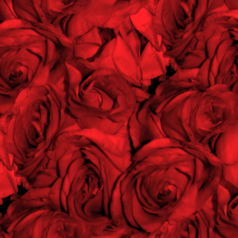 Red Roses For a Blue Lady fabric by peacoquettedesigns on Spoonflower - custom fabric
