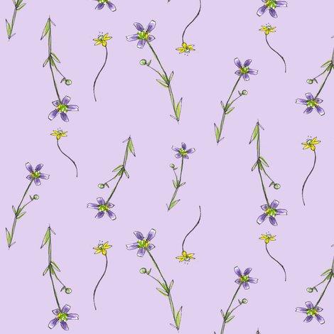 Rrlavender_purple_flowers_shop_preview