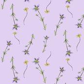 Rrlavender_purple_flowers_shop_thumb