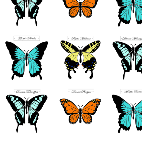 butterfly_collection fabric by avelis on Spoonflower - custom fabric