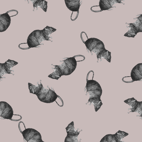 rats on pink fabric by susiprint on Spoonflower - custom fabric