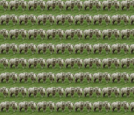 Rrrtwo-sheep_shop_preview