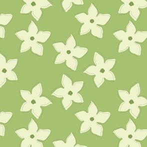 Nicotiana Flowers