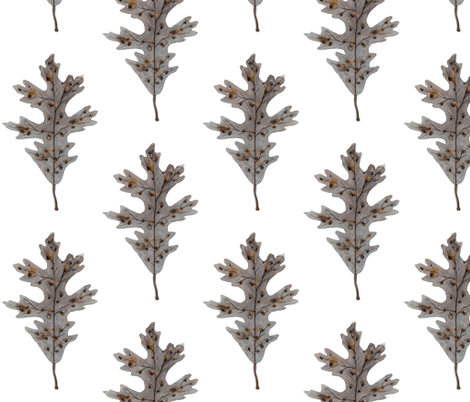 Silver Oak Leaf fabric by gollybard on Spoonflower - custom fabric
