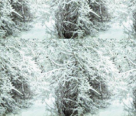 Rrr012_winter_path_l_shop_preview