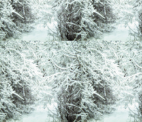 Winter Path, L fabric by animotaxis on Spoonflower - custom fabric