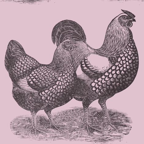 Victorian Etching Wyandotte Chicken and Rooster fabric by edsel2084 on Spoonflower - custom fabric