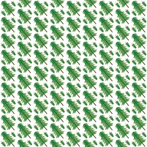 Evergreen03_spoonflower_12_5_2011