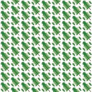 Evergreen03_spoonflower_12_5_2011
