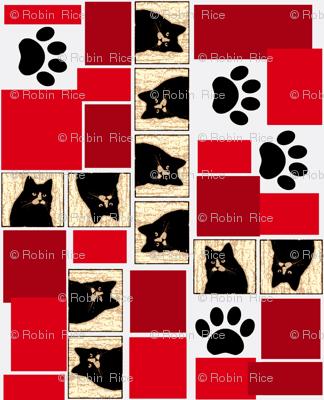 Black Cats, Cats, Cats!
