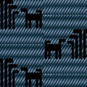 Black and Blue Skok Dog