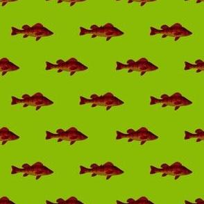 Fishies (alien)