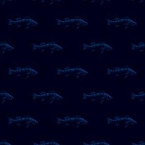 Fishies (dark night)
