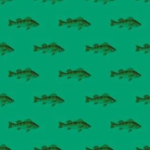 Fishies (tundra)