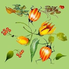 Leaf Bugs (Green Version)