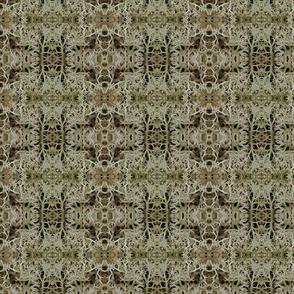 caribou lichen