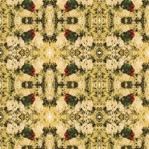 cranberries and caribou lichen-ed