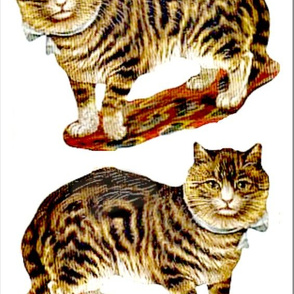 Scrap cat image for pillows