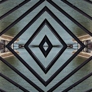 Bird along the Seine, Paris