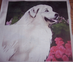 great pyr in the garden fat quarter