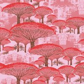 Rsocotra_dragon_trees_9_shop_thumb