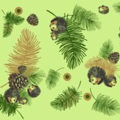 Rrrrpinecones_and_hedgehogs_shop_thumb