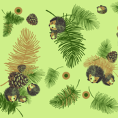 Pinecones_and_Hedgehogs