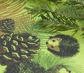 Rrrrrrpinecones_and_hedgehogs_comment_126498_thumb
