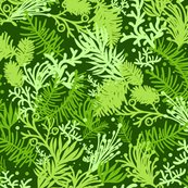 Rrrevergreens_seamless_pattern_sf_shop_thumb