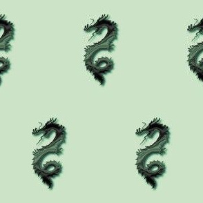 Forest Green Dragon, S