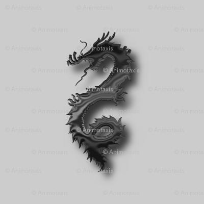 Black Dragon, S